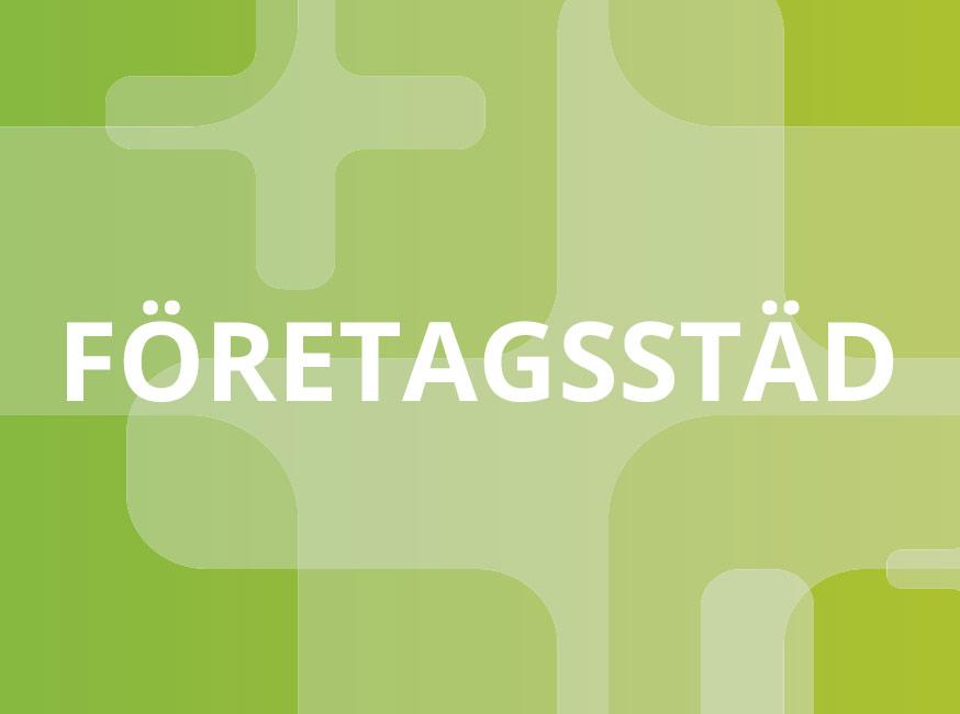 Bild grön företagsstäd